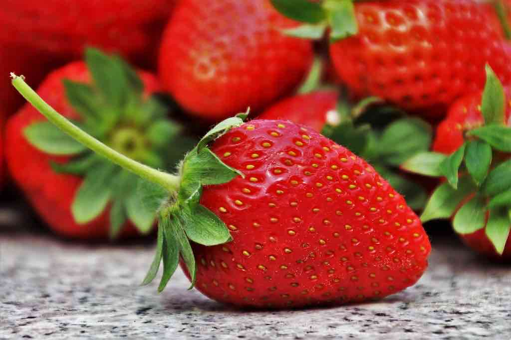 Mazot de Vex fraises Valais mai